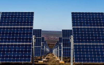 energy-renewable-lots-of-solar-panels-in-field